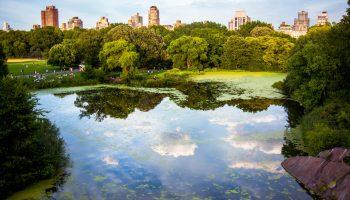 DRIFT Special Issue: Advancing urban environmental governance.