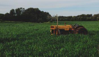 DRIFT Voedselfamilies – Innovatieagenda Duurzame Landbouw