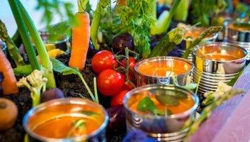 DRIFT Voedselfamilies: Zó Smaakt de Toekomst 2.0